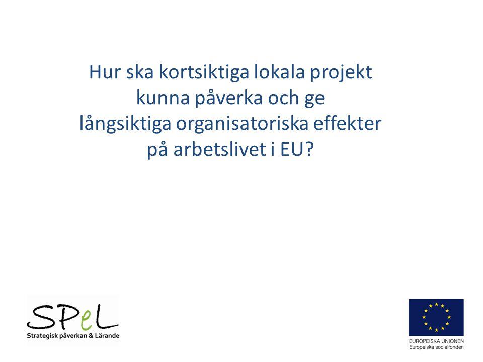 Hur ska kortsiktiga lokala projekt kunna påverka och ge långsiktiga organisatoriska effekter på arbetslivet i EU?