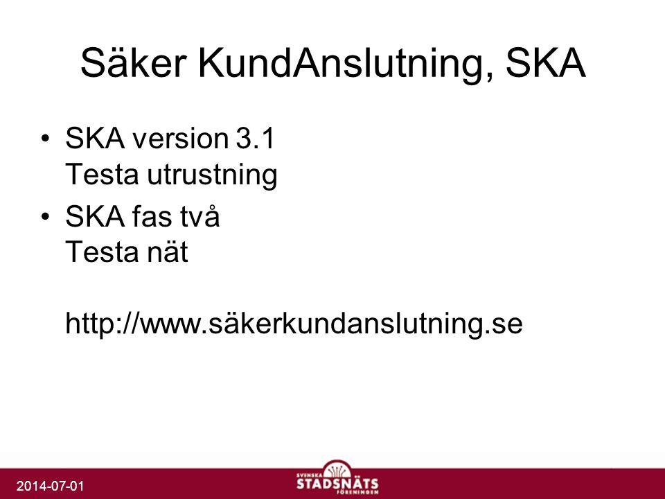 2014-07-01 Säker KundAnslutning, SKA •SKA version 3.1 Testa utrustning •SKA fas två Testa nät http://www.säkerkundanslutning.se