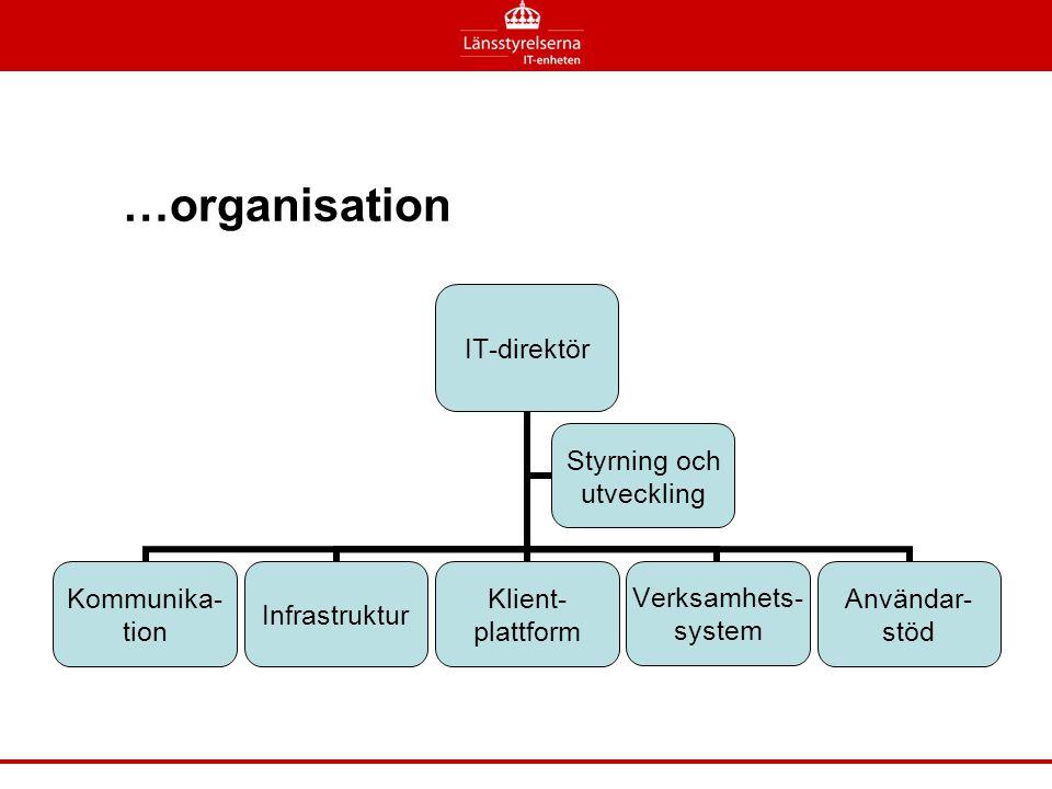 IT-direktör Kommunika-tionInfrastrukturKlient-plattformVerksamhets-systemAnvändar-stöd Styrning och utveckling …organisation