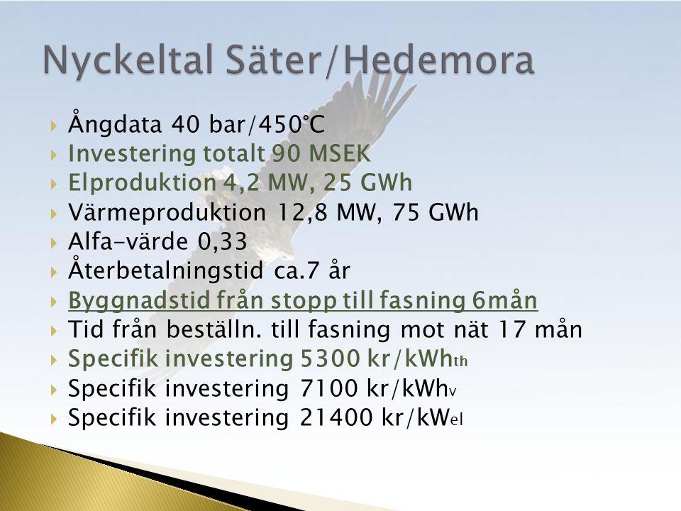  Ångdata 40 bar/450°C  Investering totalt 90 MSEK  Elproduktion 4,2 MW, 25 GWh  Värmeproduktion 12,8 MW, 75 GWh  Alfa-värde 0,33  Återbetalningstid ca.7 år  Byggnadstid från stopp till fasning 6mån  Tid från beställn.