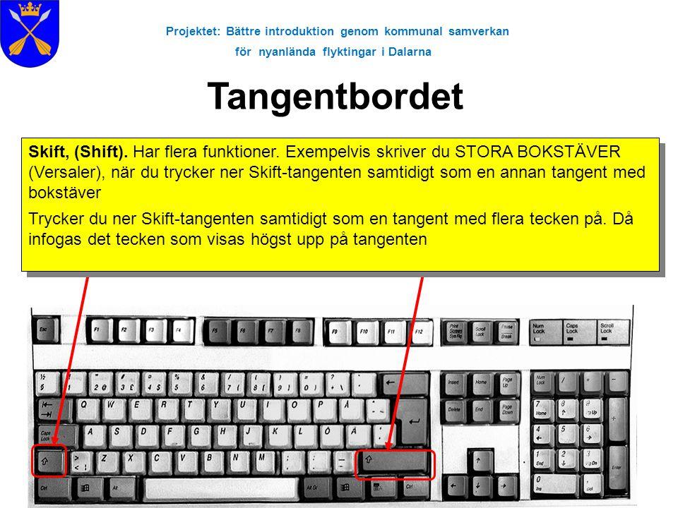 Projektet: Bättre introduktion genom kommunal samverkan för nyanlända flyktingar i Dalarna Tangentbordet Skift, (Shift). Har flera funktioner. Exempel