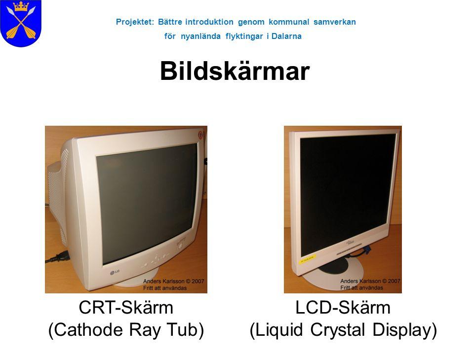 Projektet: Bättre introduktion genom kommunal samverkan för nyanlända flyktingar i Dalarna Bildskärmar CRT-Skärm (Cathode Ray Tub) LCD-Skärm (Liquid C