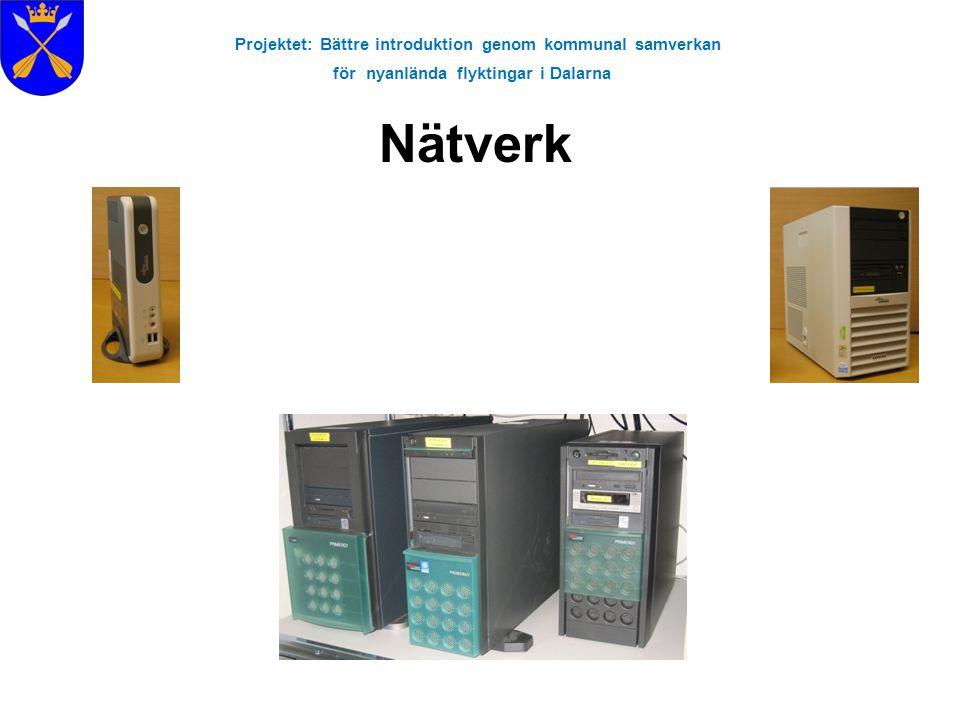 Projektet: Bättre introduktion genom kommunal samverkan för nyanlända flyktingar i Dalarna E-post och Internet