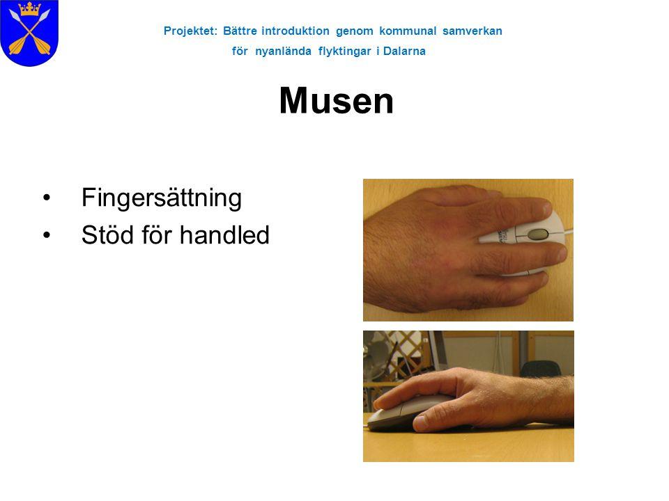 Projektet: Bättre introduktion genom kommunal samverkan för nyanlända flyktingar i Dalarna Musen •Fingersättning •Stöd för handled