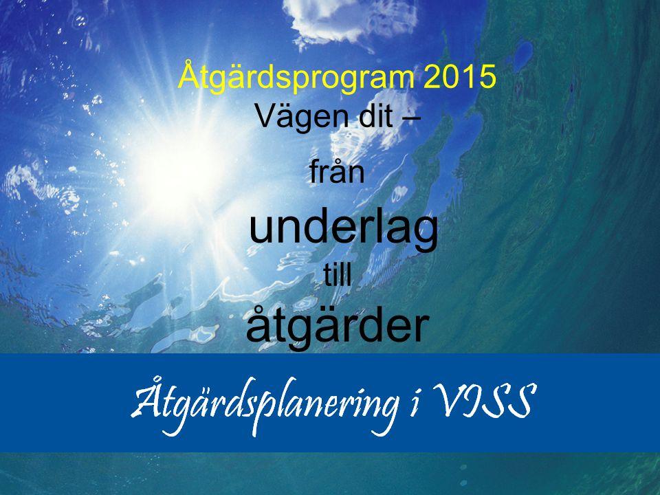 2013-06-18 Peter Wihlborg Åtgärdsprogram 2015 Vägen dit – från underlag till åtgärder