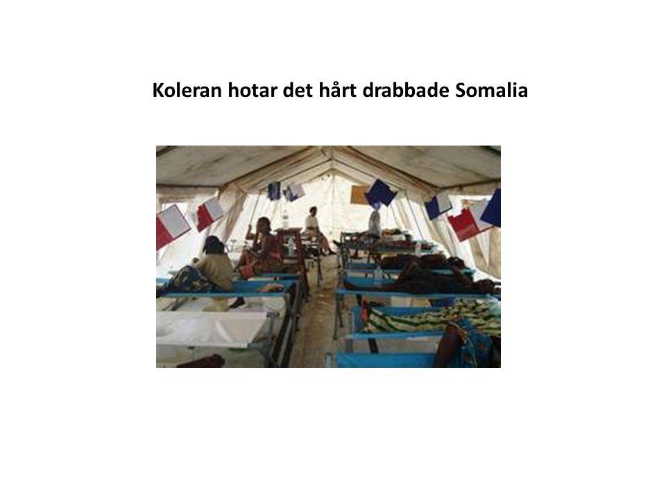 Koleran hotar det hårt drabbade Somalia