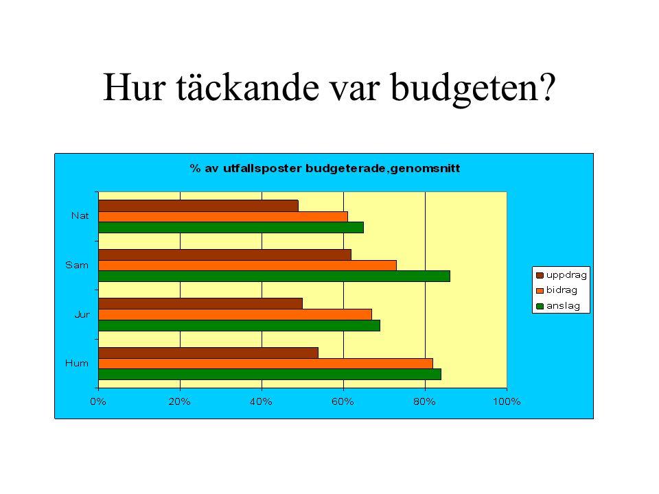 Hur täckande var budgeten?