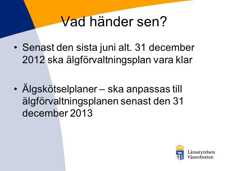 Vad händer sen? •Senast den sista juni alt. 31 december 2012 ska älgförvaltningsplan vara klar •Älgskötselplaner – ska anpassas till älgförvaltningspl