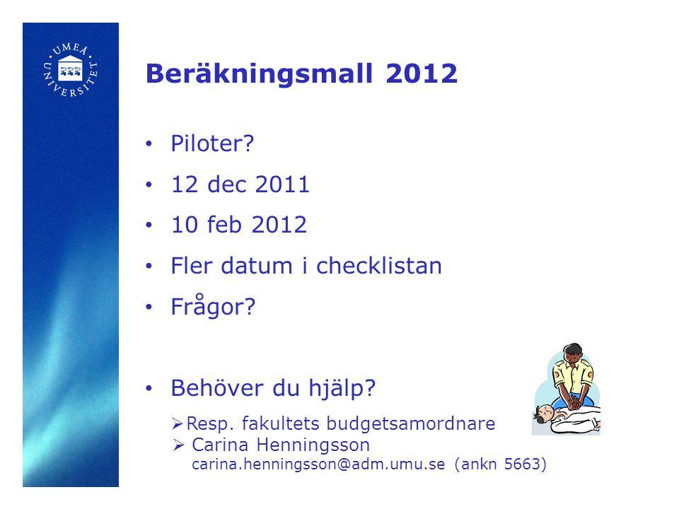 Årsredovisning 2008 Beräkningsmall 2012 • Piloter.
