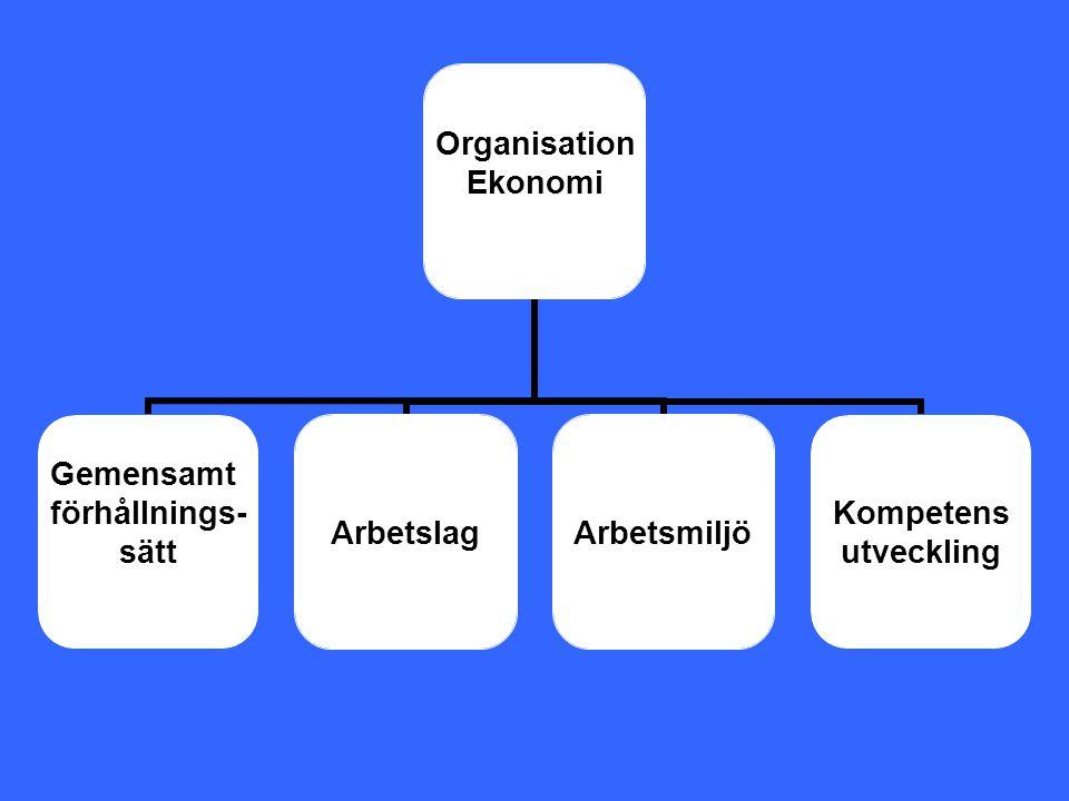 Organisation Ekonomi Gemensamt förhållnings- sätt ArbetslagArbetsmiljö Kompetens utveckling