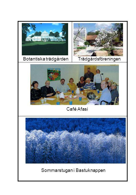 Sommarstugan i Bastuknappen Café Afasi Botantiska trädgårdenTrädgårdsföreningen