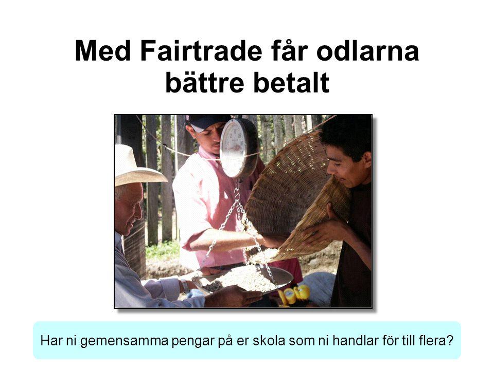 Med Fairtrade får odlarna bättre betalt Har ni gemensamma pengar på er skola som ni handlar för till flera?