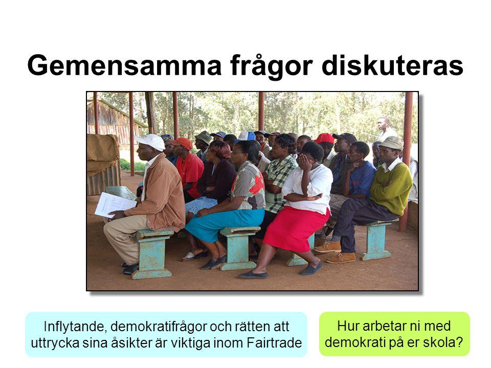 Gemensamma frågor diskuteras Inflytande, demokratifrågor och rätten att uttrycka sina åsikter är viktiga inom Fairtrade Hur arbetar ni med demokrati på er skola?