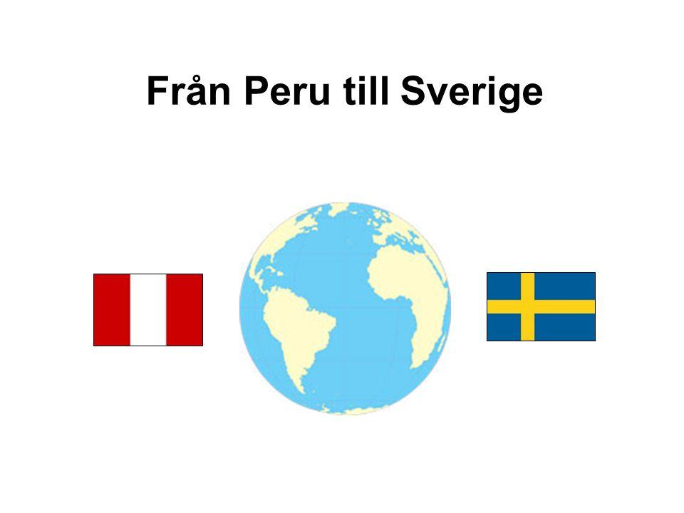 Från Peru till Sverige