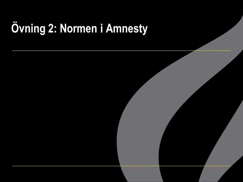 Övning 2: Normen i Amnesty
