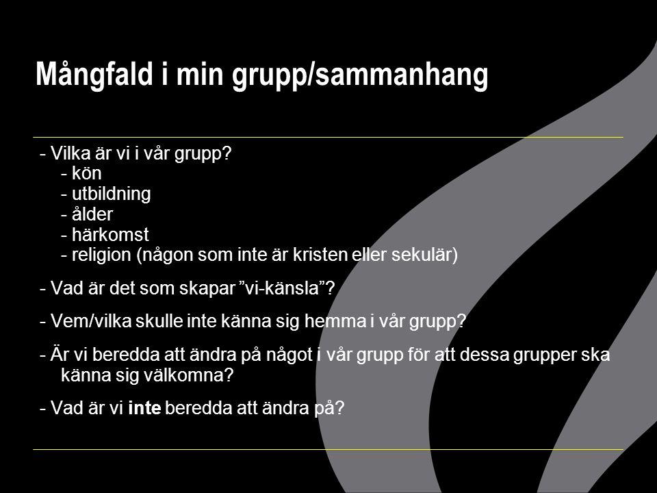 Mångfald i min grupp/sammanhang - Vilka är vi i vår grupp? - kön - utbildning - ålder - härkomst - religion (någon som inte är kristen eller sekulär)