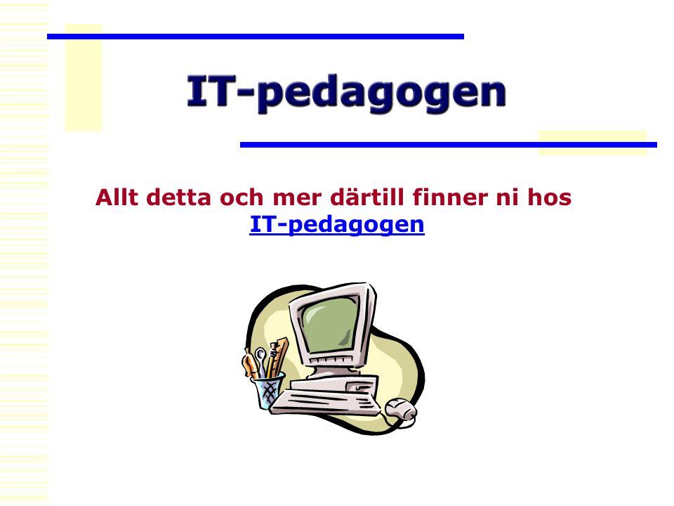 Allt detta och mer därtill finner ni hos IT-pedagogen