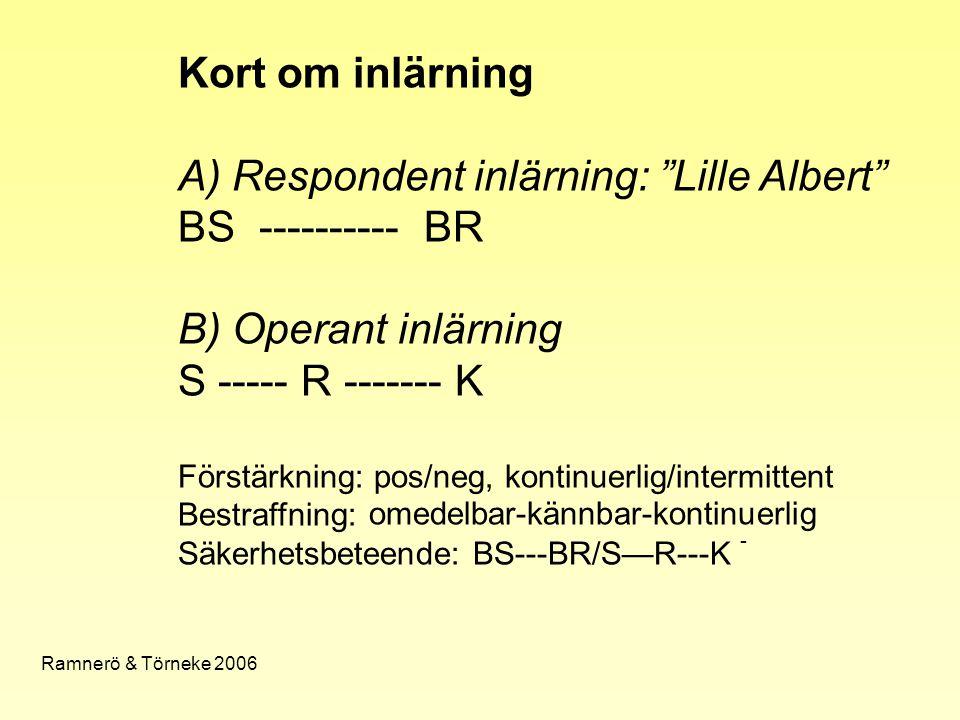 """Kort om inlärning A) Respondent inlärning: """"Lille Albert"""" BS ---------- BR B) Operant inlärning S ----- R ------- K Förstärkning: pos/neg, kontinuerli"""