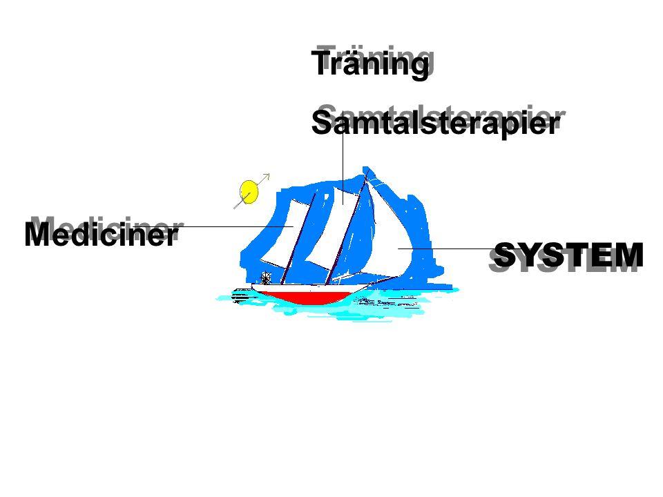 Mediciner Träning Samtalsterapier Träning Samtalsterapier SYSTEM