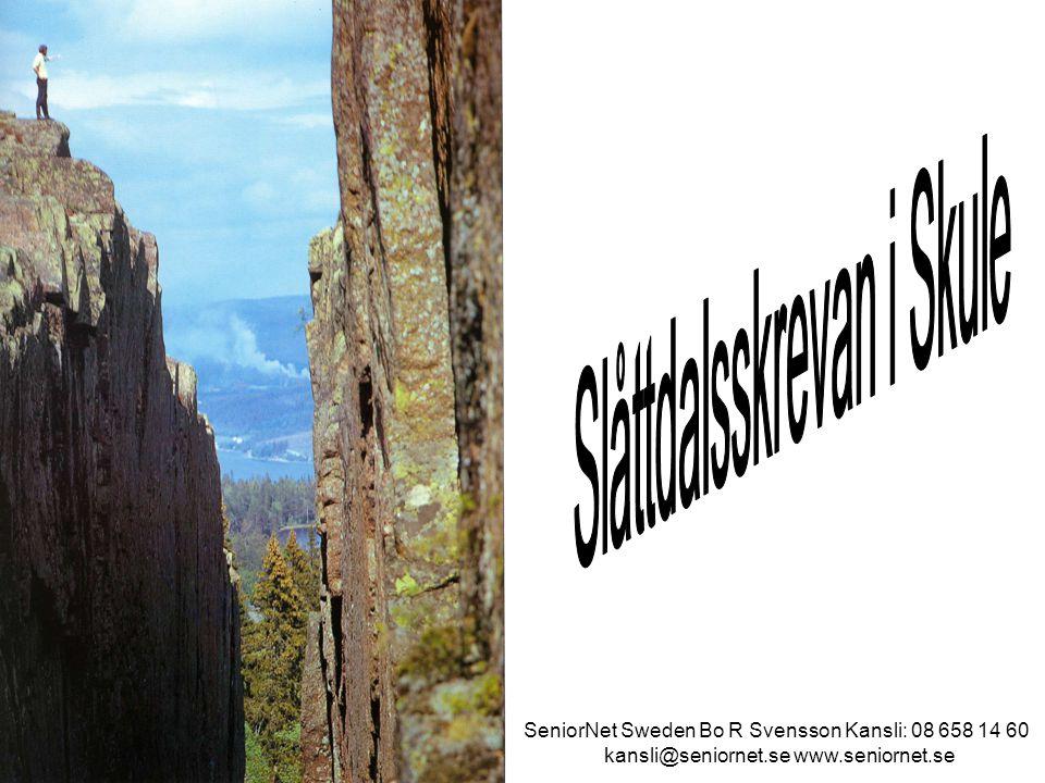 Könsfördelning SeniorNet Sweden Bo R Svensson Kansli: 08 658 14 60 kansli@seniornet.se www.seniornet.se