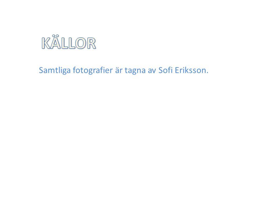 Samtliga fotografier är tagna av Sofi Eriksson.