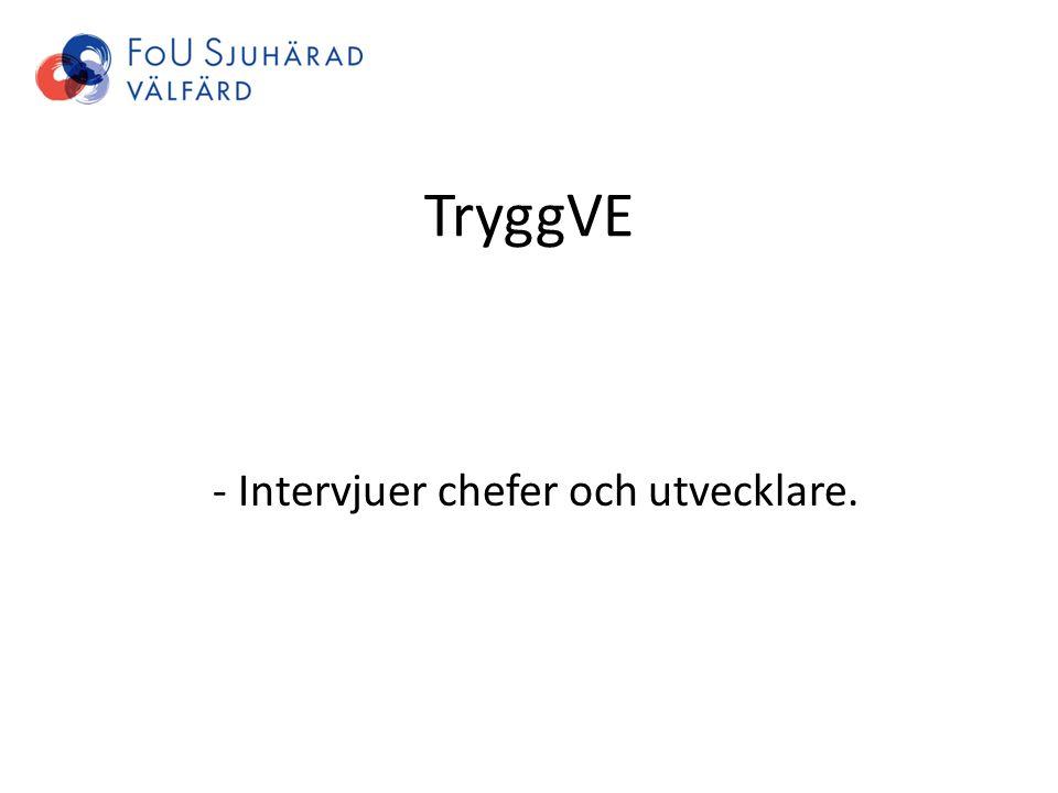 TryggVE - Intervjuer chefer och utvecklare.