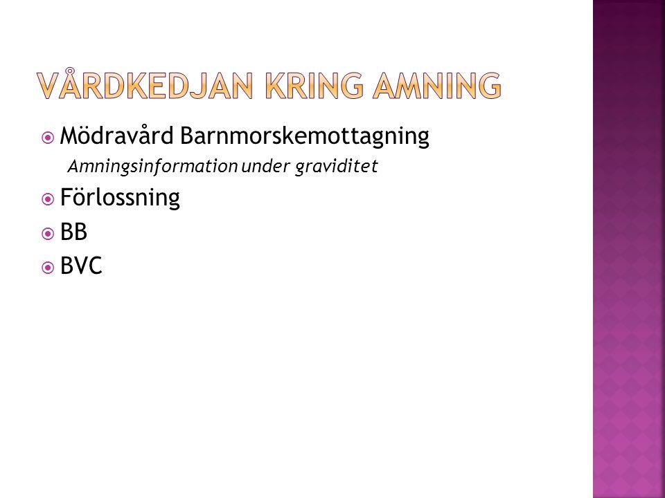  Mödravård Barnmorskemottagning Amningsinformation under graviditet  Förlossning  BB  BVC