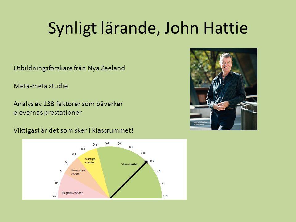 Synligt lärande, John Hattie Utbildningsforskare från Nya Zeeland Meta-meta studie Analys av 138 faktorer som påverkar elevernas prestationer Viktigas