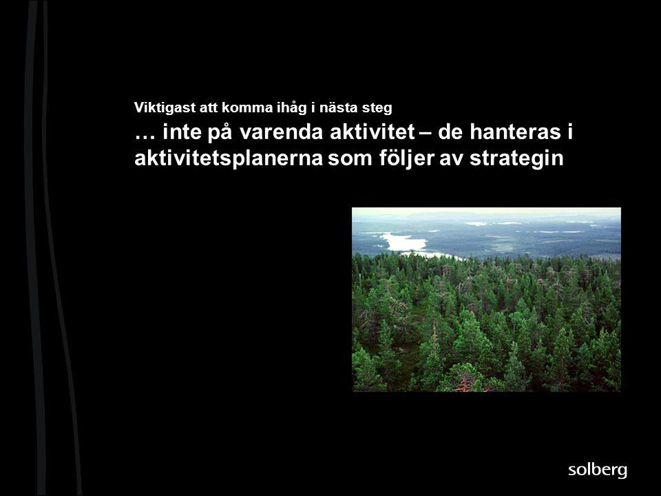 Viktigast att komma ihåg i nästa steg … inte på varenda aktivitet – de hanteras i aktivitetsplanerna som följer av strategin