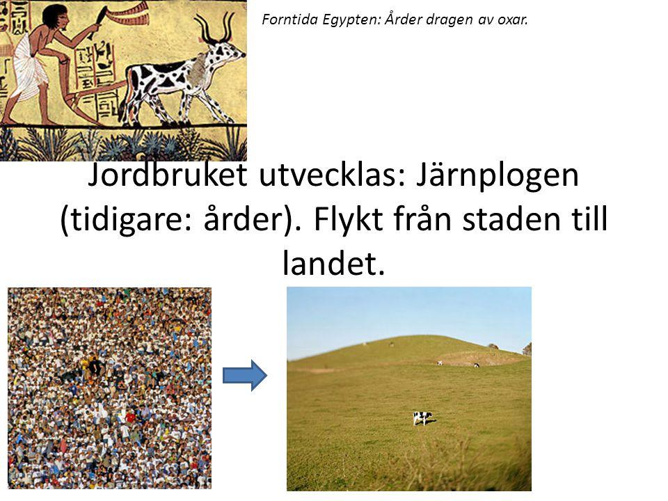 http://www.dn.se/nyheter/vetenskap/klimatet -blev-romarrikets-fall/ Eller? http://www.svd.se/kultur/understrecket/rom- kollapsade-inte-pa-en-dag_27633