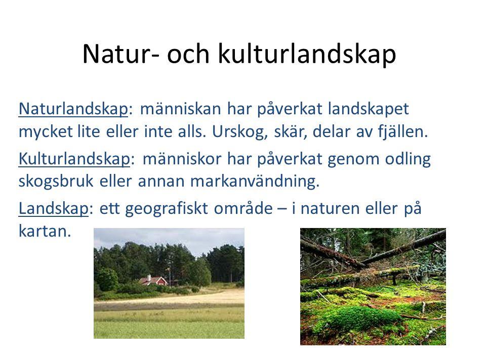 Natur- och kulturlandskap Naturlandskap: människan har påverkat landskapet mycket lite eller inte alls. Urskog, skär, delar av fjällen. Kulturlandskap