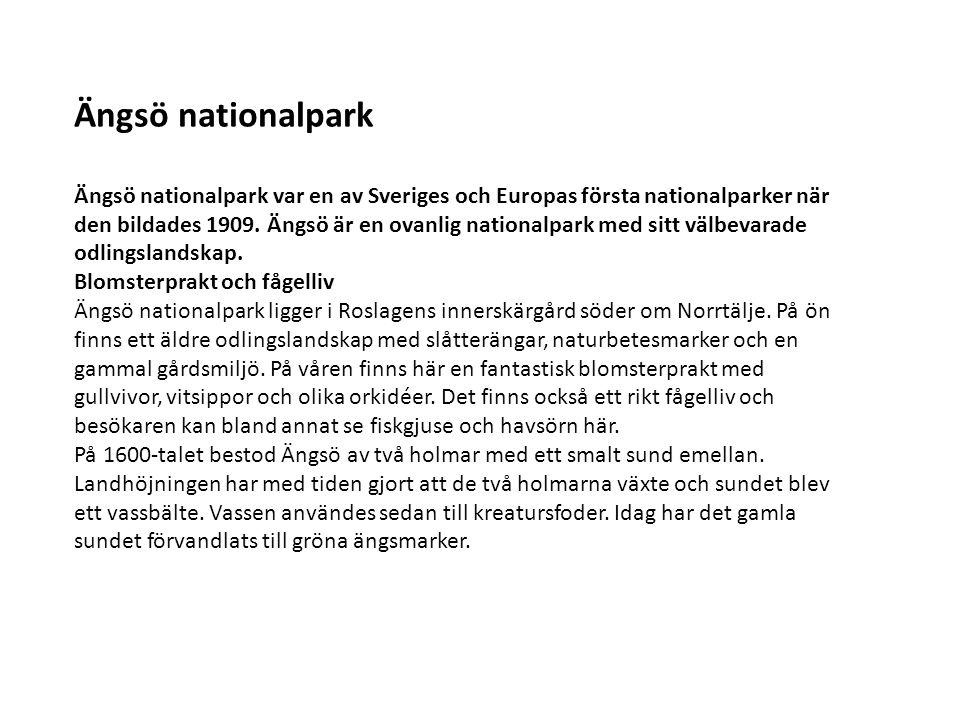 Ängsö nationalpark Ängsö nationalpark var en av Sveriges och Europas första nationalparker när den bildades 1909. Ängsö är en ovanlig nationalpark med