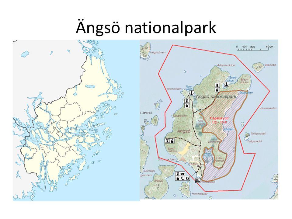Ängsö nationalpark