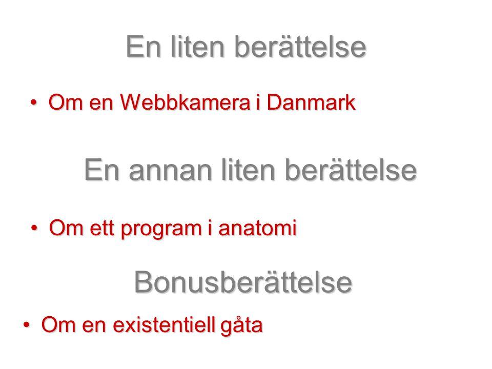 En liten berättelse •Om en Webbkamera i Danmark En annan liten berättelse •Om ett program i anatomi Bonusberättelse •Om en existentiell gåta