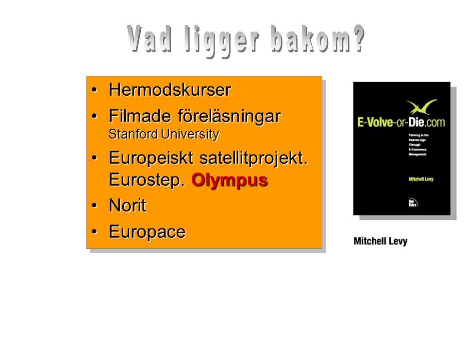 Än större problem •Globalisering…för vem.•Rättviseperspektiv.