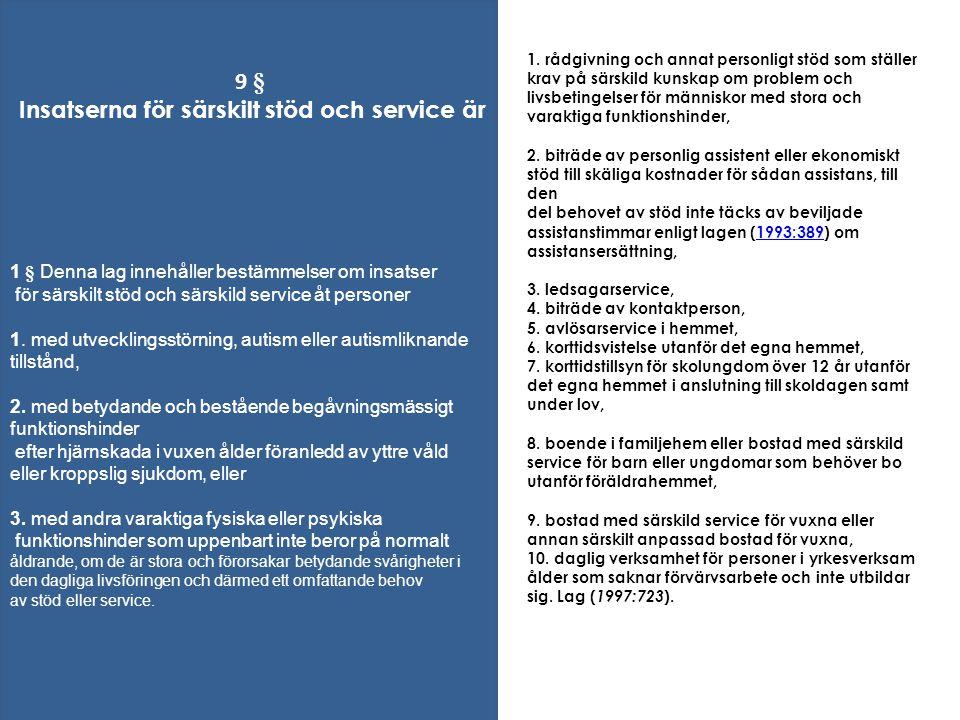 1. rådgivning och annat personligt stöd som ställer krav på särskild kunskap om problem och livsbetingelser för människor med stora och varaktiga funk