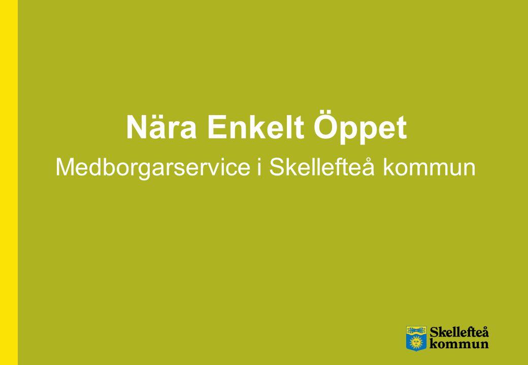 Benchmarking bransch Quality index (viktat värde) Skellefteå kommun: 89,3 Alla mätningar 2008: 85,6 Offentlig sektor: 81,2