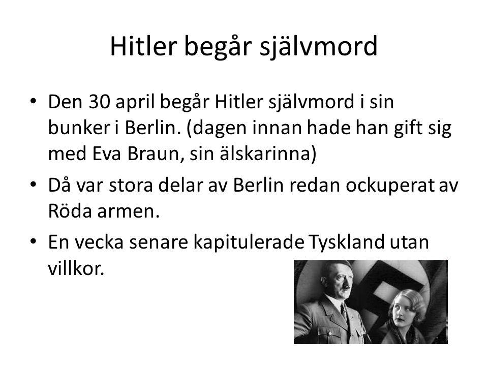 Hitler begår självmord • Den 30 april begår Hitler självmord i sin bunker i Berlin. (dagen innan hade han gift sig med Eva Braun, sin älskarinna) • Då