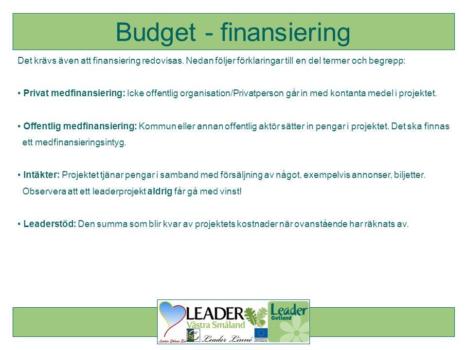 Det krävs även att finansiering redovisas. Nedan följer förklaringar till en del termer och begrepp: • Privat medfinansiering: Icke offentlig organisa