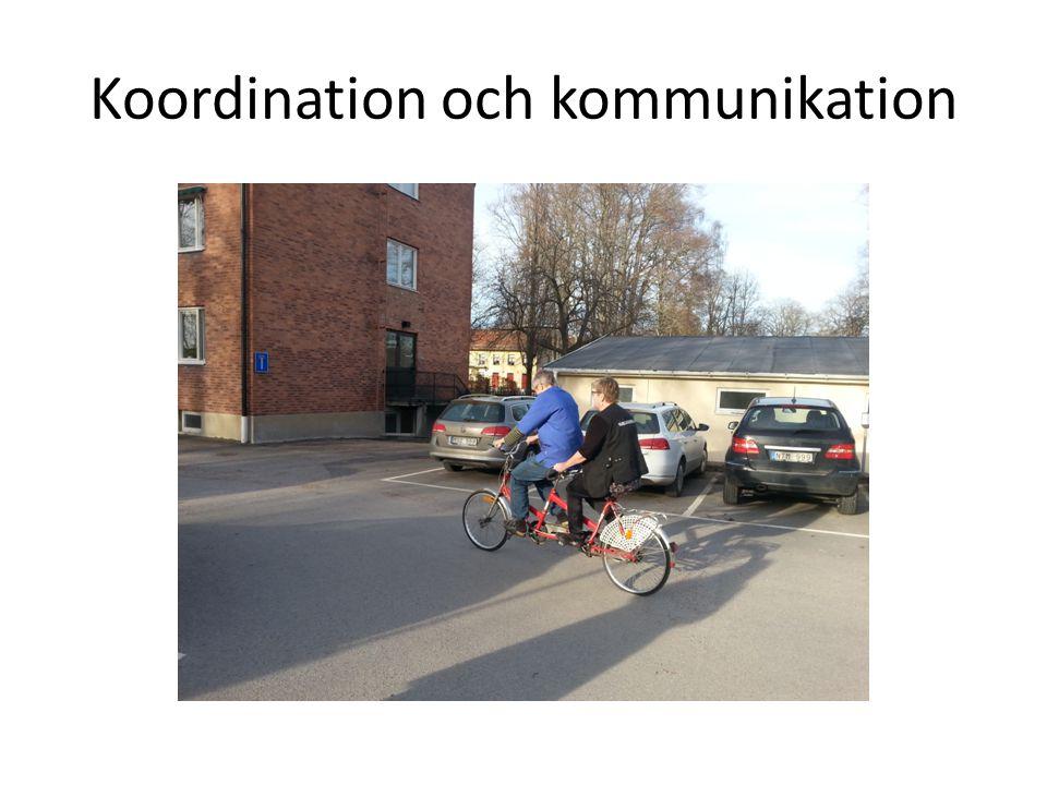 Koordination och kommunikation