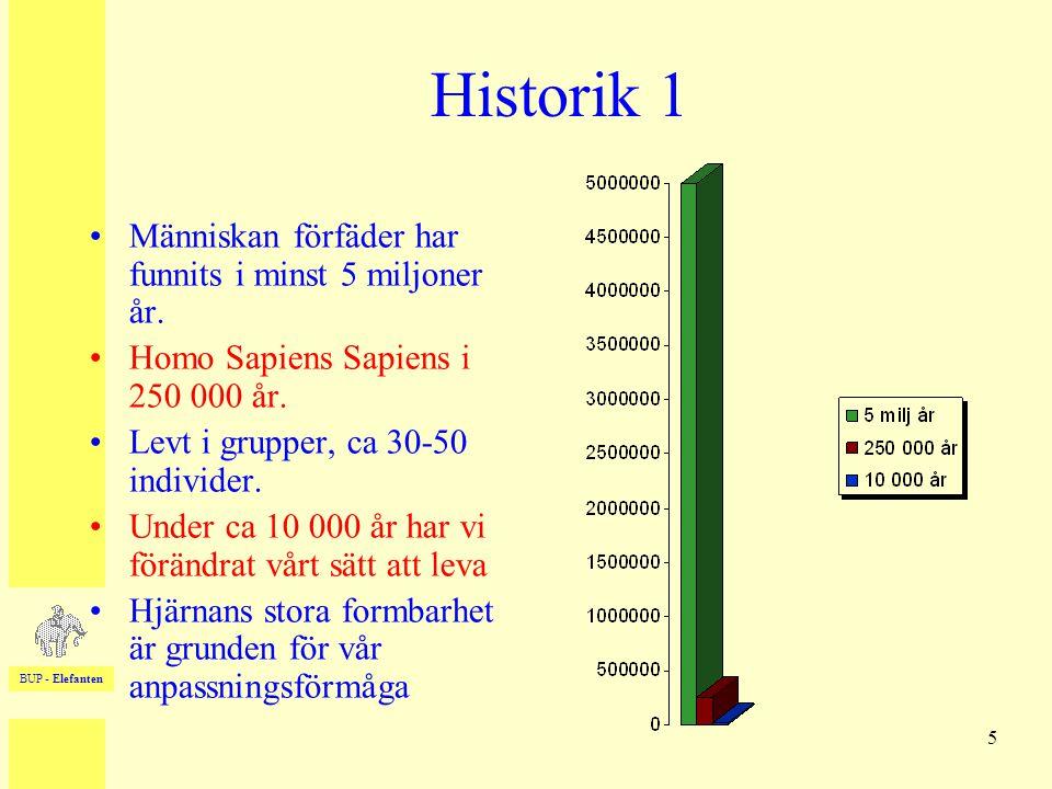 BUP - Elefanten 5 Historik 1 •Människan förfäder har funnits i minst 5 miljoner år. •Homo Sapiens Sapiens i 250 000 år. •Levt i grupper, ca 30-50 indi