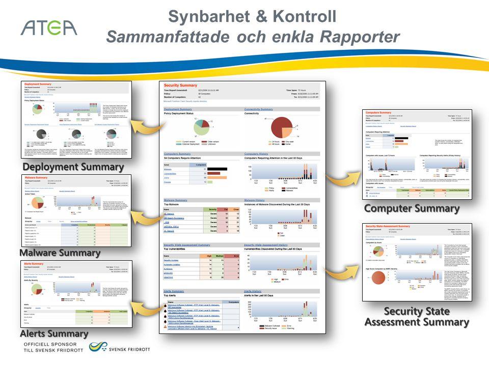 Synbarhet & Kontroll Sammanfattade och enkla Rapporter