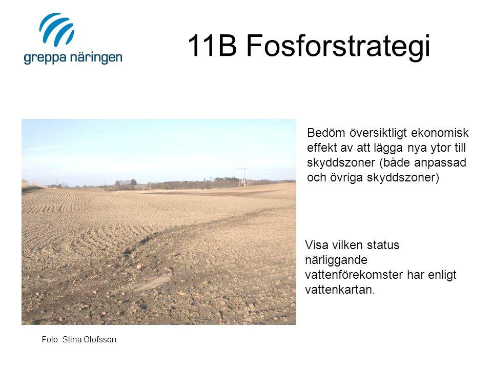11B Fosforstrategi Visa vilken status närliggande vattenförekomster har enligt vattenkartan.