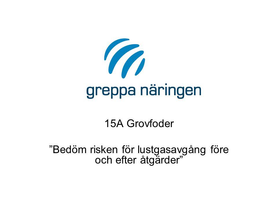 15A Grovfoder Bedöm risken för lustgasavgång före och efter åtgärder