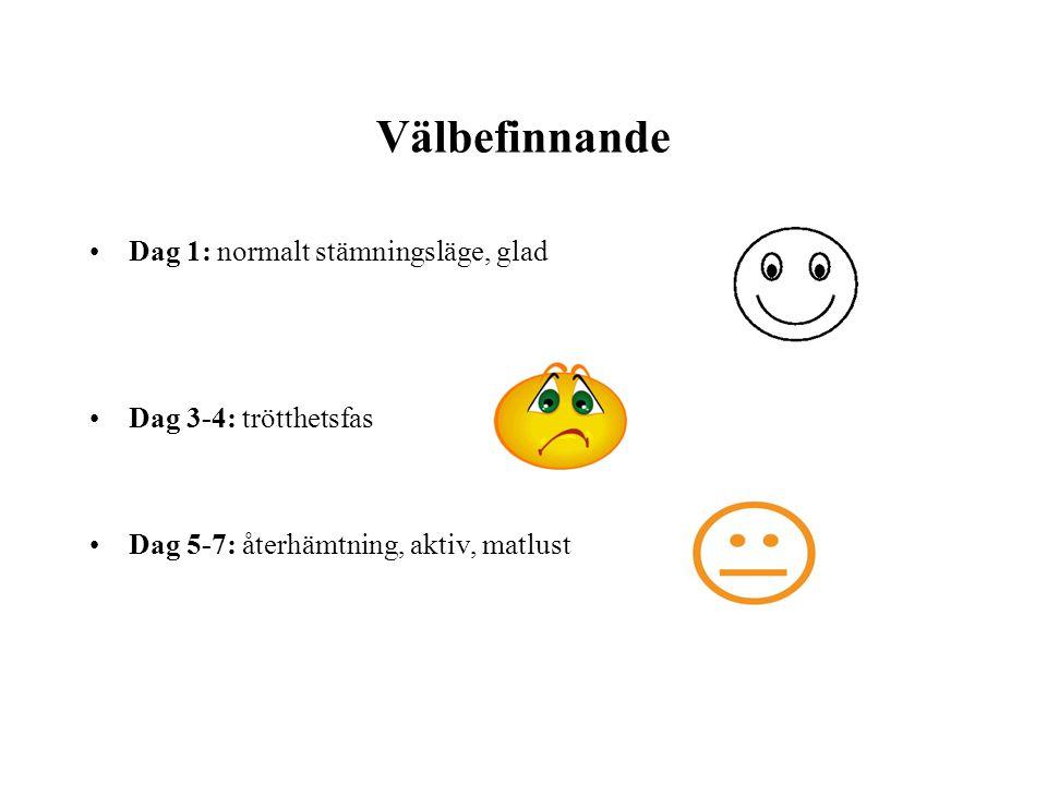 Välbefinnande •Dag 1: normalt stämningsläge, glad •Dag 3-4: trötthetsfas •Dag 5-7: återhämtning, aktiv, matlust