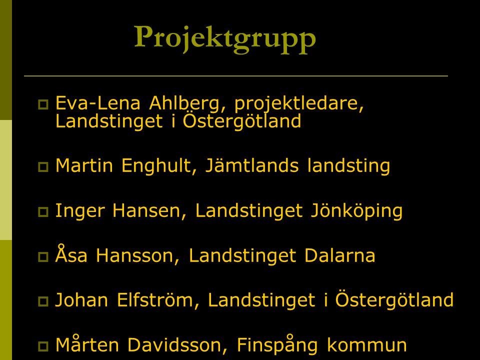  Eva-Lena Ahlberg, projektledare, Landstinget i Östergötland  Martin Enghult, Jämtlands landsting  Inger Hansen, Landstinget Jönköping  Åsa Hansso