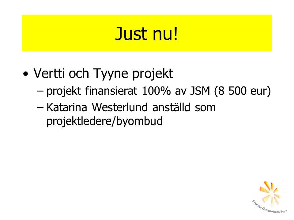 Just nu! •Vertti och Tyyne projekt –projekt finansierat 100% av JSM (8 500 eur) –Katarina Westerlund anställd som projektledere/byombud