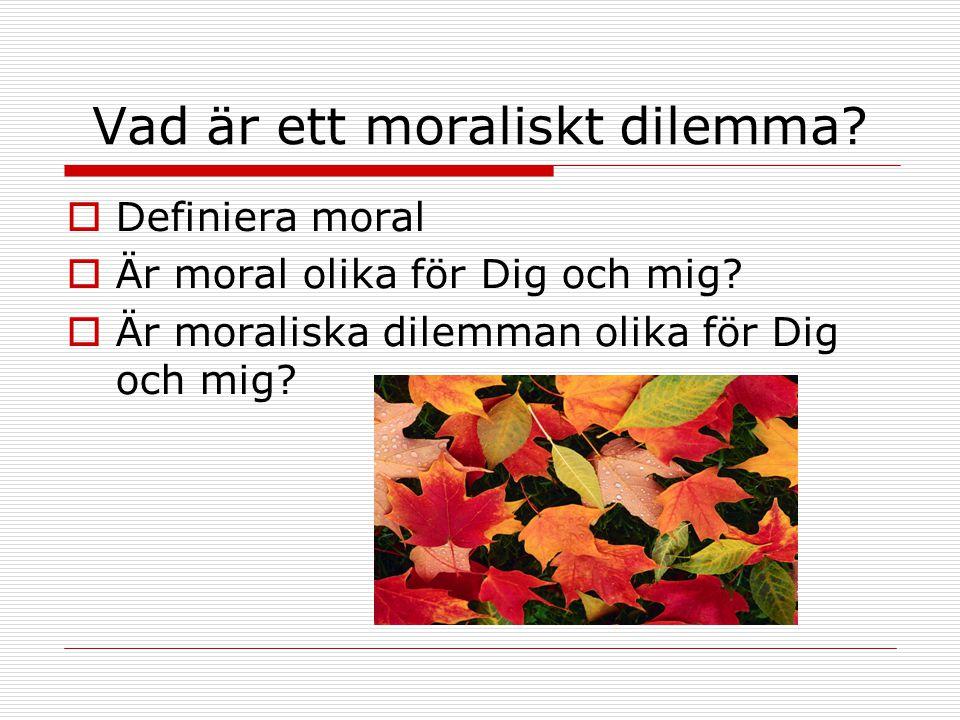 Vad är ett moraliskt dilemma?  Definiera moral  Är moral olika för Dig och mig?  Är moraliska dilemman olika för Dig och mig?