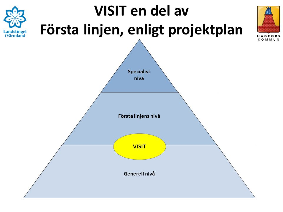 VISIT en del av Första linjen, enligt projektplan Specialist nivå Första linjens nivå Generell nivå VISIT