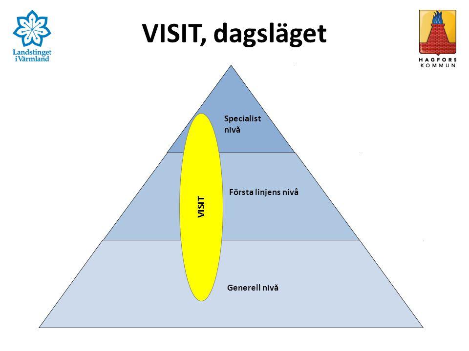 VISIT, dagsläget Specialist nivå Första linjens nivå Generell nivå VISIT